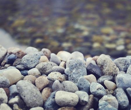 filtri per acquari